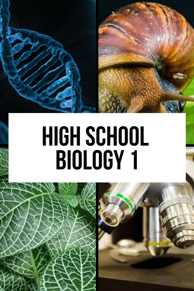 High School Biology